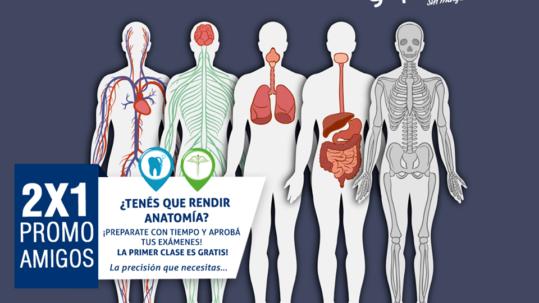 2x1 Anatomía Apoyo Gepeese